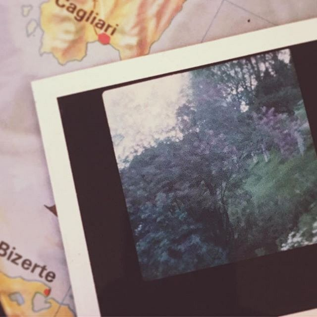 Testing the pinhole teqnique with colour polaroid film. #whattophotograph #llilac #polaroid #analoglove #hasselblad #garden #birches #italy #cagliari #bizerte #mapeurope #tablemap #savefujifp100c #savefujifp3000b #fujifilm #filmisnotdead