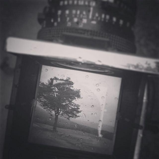 What you see is what you get #wysiwyg #wysiwygphoto #analoglove #blackandwhites #bnwmood #hasselblad #lonelylife #savefujifp100c #savefujifp3000b #filmisnotdead #filmisalive #rainyfuckingday