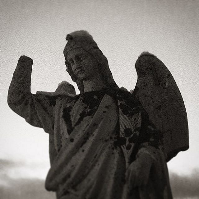 Project Seven #picturenumbertwo #angel #fallen #watchingover #blablabla #bnw
